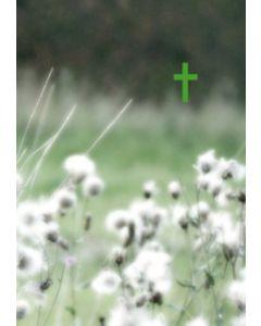 Raamattu Vihreät niityt
