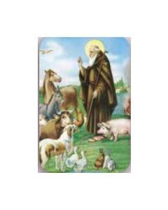 Magneetti Franciscus & eläimet