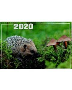 Päivän seinäkalenteri 2020 kirkkovuoden teksteillä