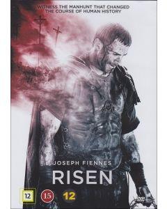 DVD Risen